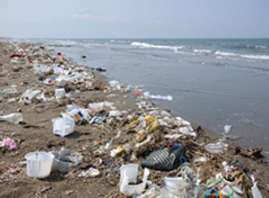 Savez-vous qu'une brosse à dents représente 1,5 kg de déchets ?
